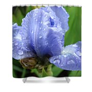 Spring Raindrops Blue Iris Flower Water Baslee Troutman Shower Curtain