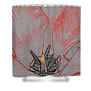 Spring Red Shower Curtain