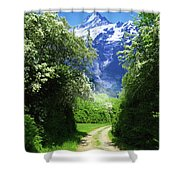 Spring Road To Mountains Shower Curtain