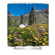 Spring Rocky Mountain Landscape Shower Curtain
