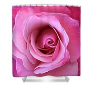 Spring Rose Shower Curtain