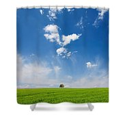 Spring Scape Shower Curtain