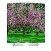 Spring Series #20 Shower Curtain