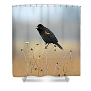 Spring Singer Shower Curtain