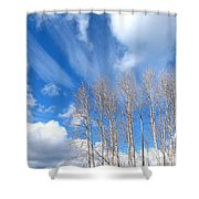 Spring Sky And Cotton Trees Shower Curtain