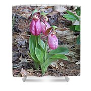 Spring Slippers Shower Curtain