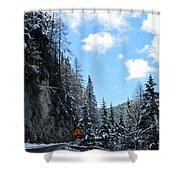 Spring Snow Shower Curtain