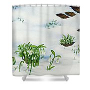 Spring Snowdrops Shower Curtain