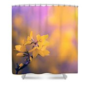 Spring Sproing Shower Curtain