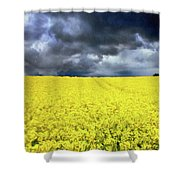 Spring Storm In Australia Shower Curtain