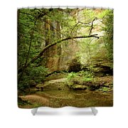 Spring Stream Shower Curtain