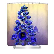 Spring Sunshine On Blue Shower Curtain