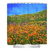 Spring Superbloom In Walker Canyon Shower Curtain