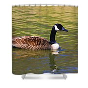 Spring Time Goose Shower Curtain