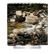 Spring Time IIi Shower Curtain