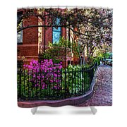 Spring Time In The City Shower Curtain