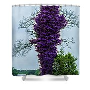 Spring Tree Shower Curtain