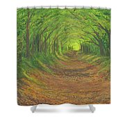 Spring Tree Tunnel Shower Curtain