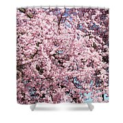 Spring Trees Art Prints Pink Springtime Blossoms Baslee Troutman Shower Curtain