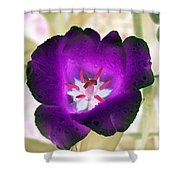 Spring Tulips - Photopower 3028 Shower Curtain