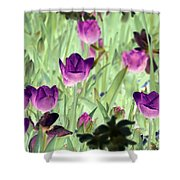 Spring Tulips - Photopower 3051 Shower Curtain