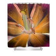 Spring Tulips - Photopower 3109 Shower Curtain