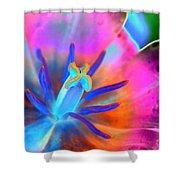 Spring Tulips - Photopower 3127 Shower Curtain