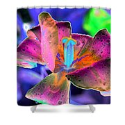 Spring Tulips - Photopower 3128 Shower Curtain