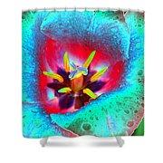 Spring Tulips - Photopower 3131 Shower Curtain