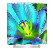 Spring Tulips - Photopower 3150 Shower Curtain