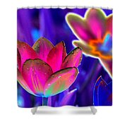 Spring Tulips - Photopower 3152 Shower Curtain