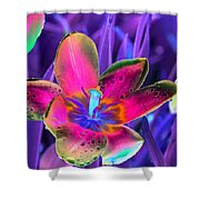 Spring Tulips - Photopower 3154 Shower Curtain