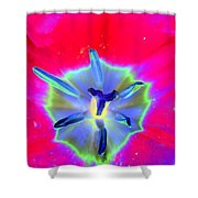 Spring Tulips - Photopower 3167 Shower Curtain