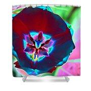 Spring Tulips - Photopower 3168 Shower Curtain