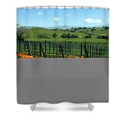 Spring View At Rusack Vineyards Shower Curtain