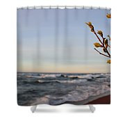 Spring View Shower Curtain