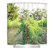 Spring Vines Shower Curtain