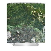 Spring Water At The Grotto Shower Curtain