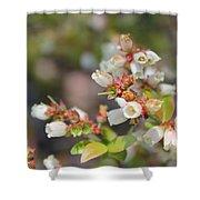 Spring Wildflower Shower Curtain