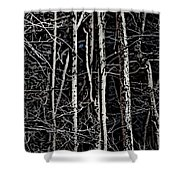 Spring Woods Simulated Woodcut Shower Curtain
