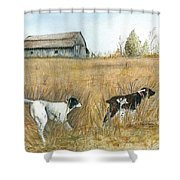 Springfield Bird Dogs Shower Curtain