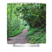 Springing Down The Path Shower Curtain