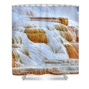 Springs Alive Shower Curtain