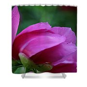 Spring's Bluster Shower Curtain
