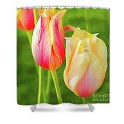 Spring's Garden Shower Curtain