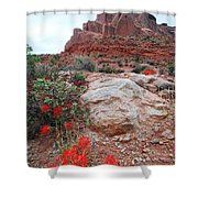 Springtime At Arches National Park Shower Curtain