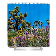 Springtime At The Canyon Shower Curtain