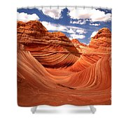 Springtime At The Wave Shower Curtain