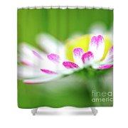 Springtime - Flower Shower Curtain