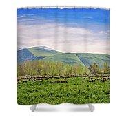 Springtime Grazing Shower Curtain